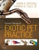 Current Therapy in Exotic Pet Practice, 1st Edition