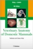 Veterinary Anatomy of Domestic Mammals. Sixth edition. 2014