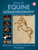Equine Ultrasonography