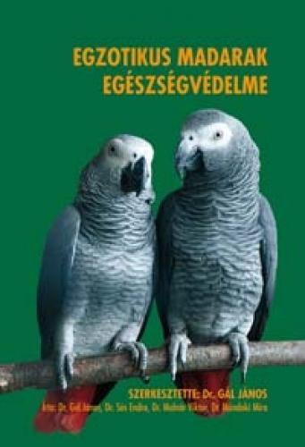 ízületi gyulladás papagájban ízületi fájdalom fizikai. terhelések